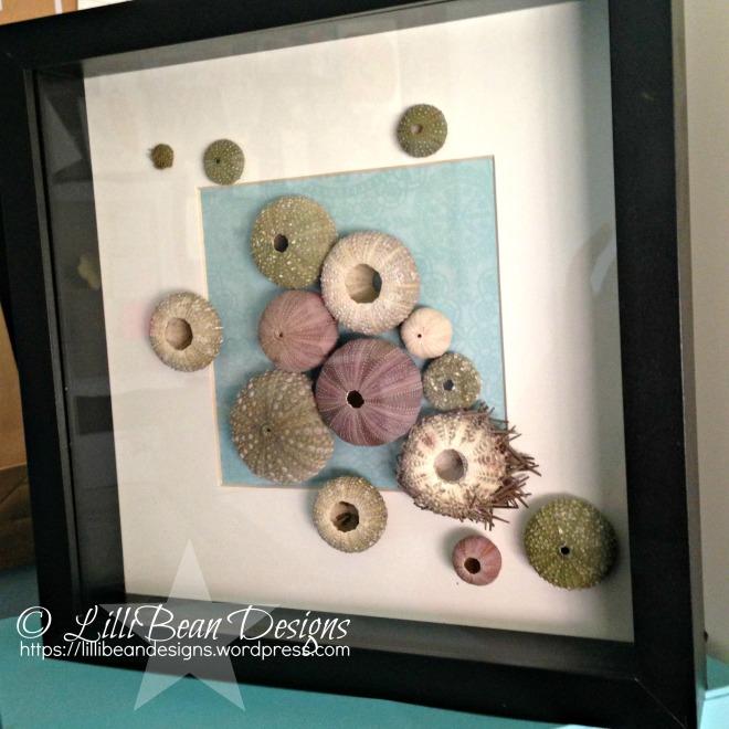 Sea Urchin vii