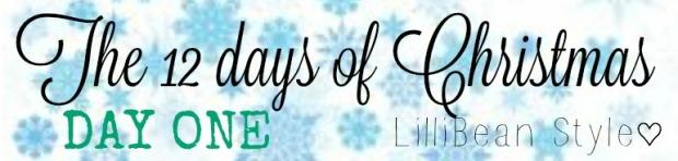 12 days of Christmas - 1