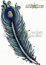 peacock [wm]